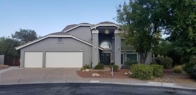 3607 E Tano Court, Phoenix, AZ 85044 (MLS #6114738) :: Kepple Real Estate Group