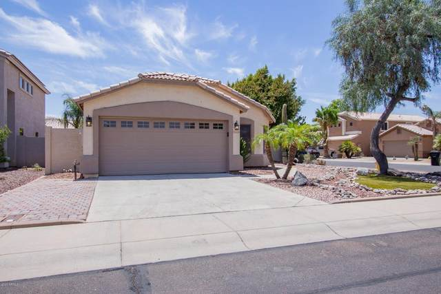 16289 W Tasha Drive, Surprise, AZ 85374 (MLS #6114764) :: REMAX Professionals