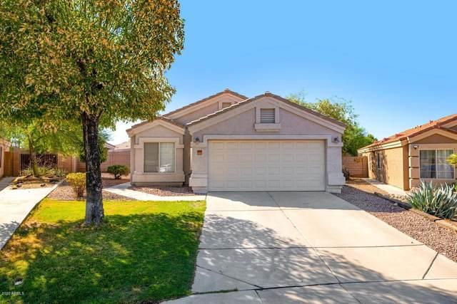 18143 N 113TH Circle, Surprise, AZ 85378 (MLS #6114777) :: Maison DeBlanc Real Estate