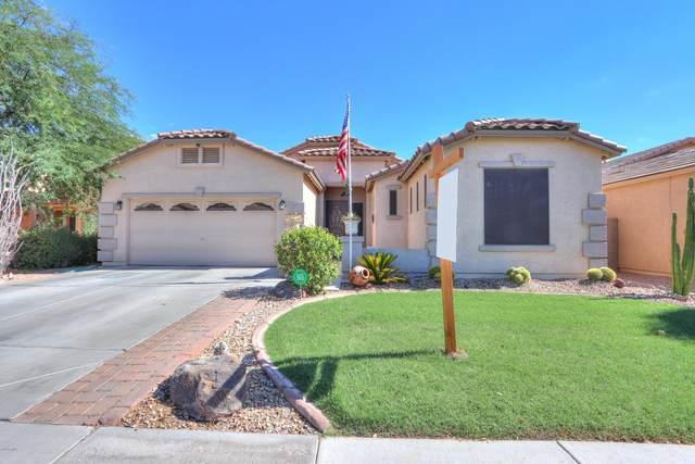 43399 W Lindgren Drive, Maricopa, AZ 85138 (MLS #6114783) :: Dijkstra & Co.