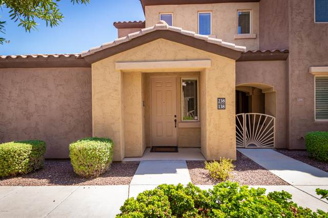 250 W Queen Creek Road #238, Chandler, AZ 85248 (MLS #6114804) :: The Property Partners at eXp Realty