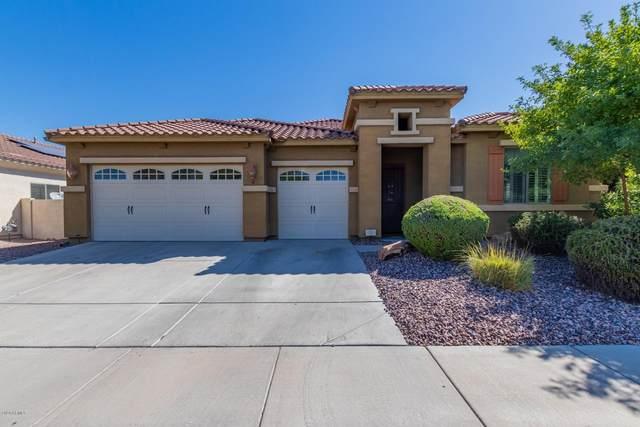 2506 E Robb Lane, Phoenix, AZ 85024 (MLS #6114828) :: Maison DeBlanc Real Estate