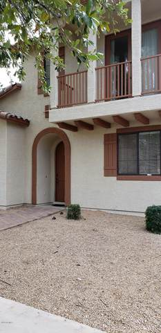 2419 W Jake Haven, Phoenix, AZ 85085 (MLS #6114836) :: Selling AZ Homes Team