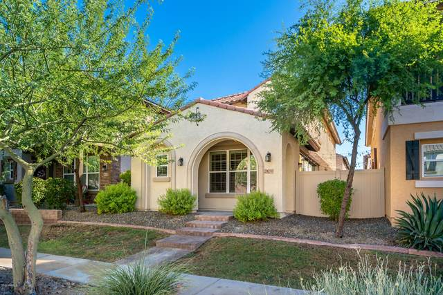 29030 N 125TH Lane, Peoria, AZ 85383 (MLS #6114858) :: The Helping Hands Team