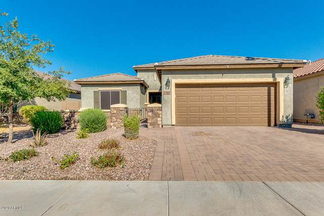3390 N San Marin Drive, Florence, AZ 85132 (MLS #6114863) :: Arizona Home Group