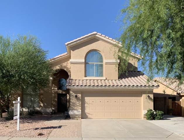 4658 E Summerhaven Drive, Phoenix, AZ 85044 (MLS #6114866) :: Kevin Houston Group