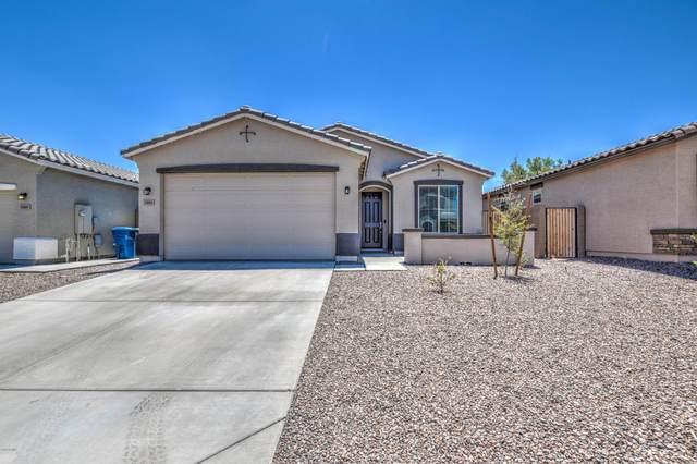 1983 W Emrie Avenue, Queen Creek, AZ 85142 (MLS #6114871) :: Selling AZ Homes Team