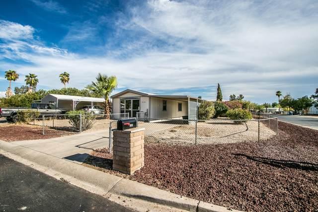 9101 E Bramble Avenue, Mesa, AZ 85208 (MLS #6114873) :: Conway Real Estate