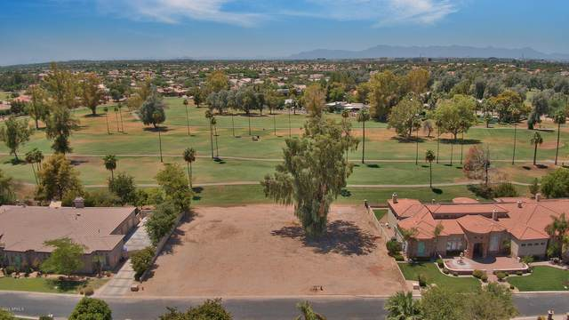 172 S Quarty Circle, Chandler, AZ 85225 (MLS #6114876) :: The Riddle Group
