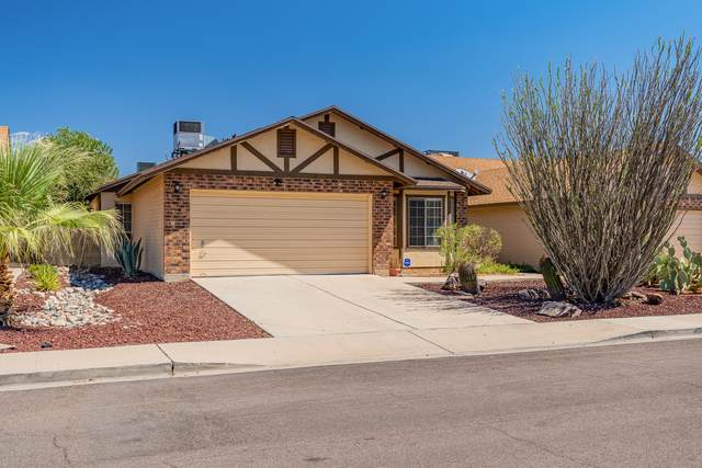 8716 W Meadow Drive, Peoria, AZ 85382 (MLS #6114896) :: Power Realty Group Model Home Center