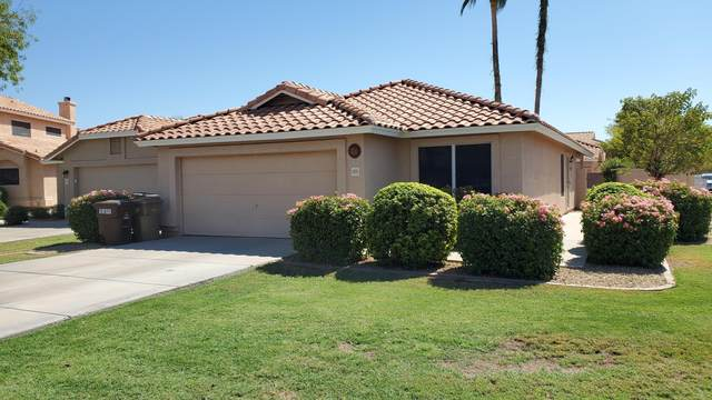 11951 N 80TH Avenue, Peoria, AZ 85345 (MLS #6114942) :: Brett Tanner Home Selling Team