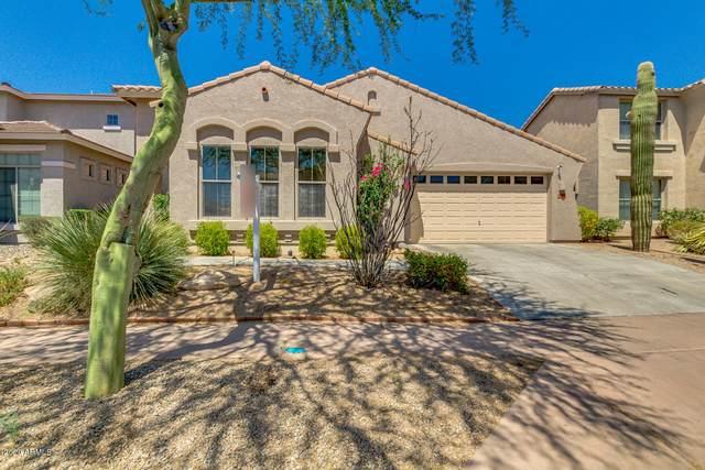 3010 W Via De Pedro Miguel, Phoenix, AZ 85086 (MLS #6115044) :: Conway Real Estate