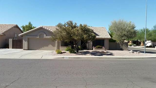 3842 W Ironwood Drive, Chandler, AZ 85226 (MLS #6115049) :: Klaus Team Real Estate Solutions