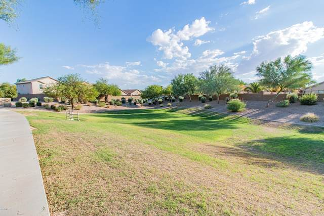 28390 N Desert Hills Drive, Queen Creek, AZ 85142 (MLS #6115051) :: BIG Helper Realty Group at EXP Realty