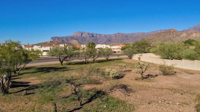 6000 S Kings Ranch Road, Gold Canyon, AZ 85118 (#6115073) :: Luxury Group - Realty Executives Arizona Properties