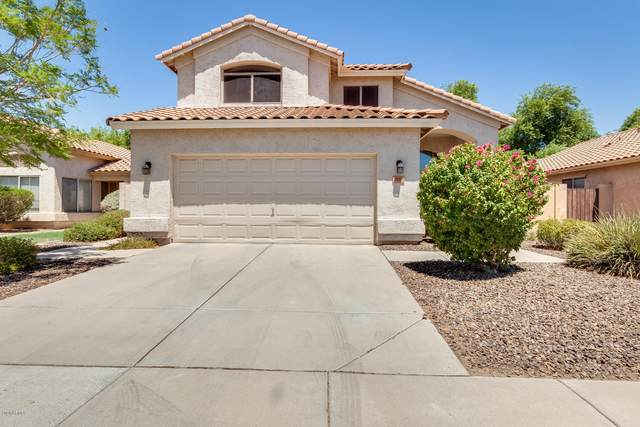 1130 W Seagull Drive, Chandler, AZ 85286 (MLS #6115109) :: Lifestyle Partners Team