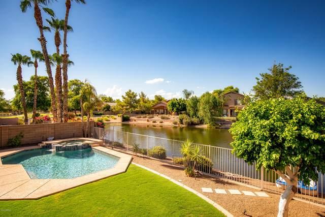 6818 W Skylark Drive, Glendale, AZ 85308 (MLS #6115114) :: Selling AZ Homes Team