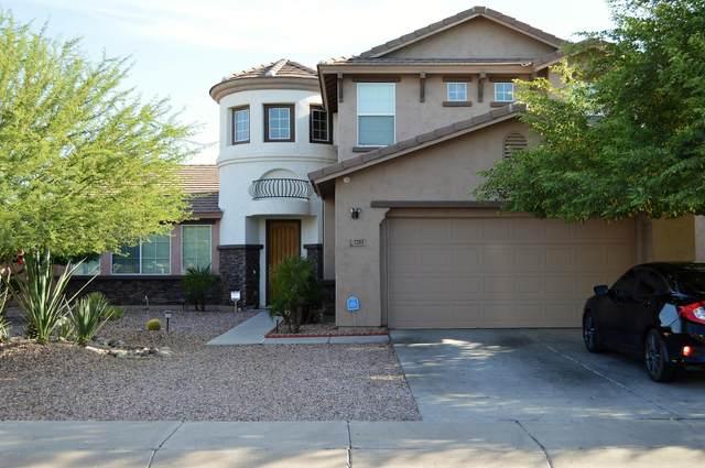 7203 W Darrow Street, Laveen, AZ 85339 (MLS #6115115) :: Long Realty West Valley
