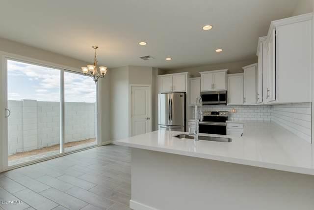 5459 S Dillon, Mesa, AZ 85212 (MLS #6115175) :: Homehelper Consultants