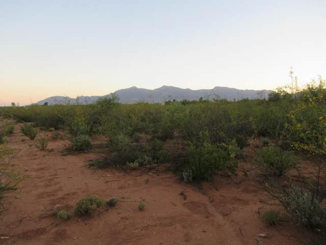 017 E Conestoga Trail E, Sierra Vista, AZ 85635 (MLS #6115218) :: Homehelper Consultants