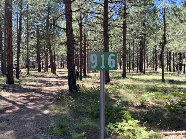826 Bobs Loop, Forest Lakes, AZ 85931 (MLS #6115230) :: REMAX Professionals