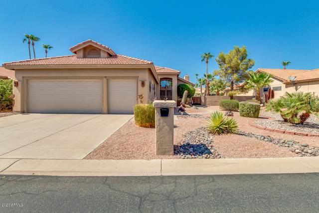 10824 E Regal Drive, Sun Lakes, AZ 85248 (MLS #6115244) :: Riddle Realty Group - Keller Williams Arizona Realty