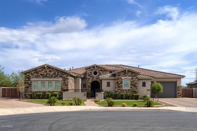 3241 E Indigo Court, Chandler, AZ 85286 (MLS #6115269) :: REMAX Professionals