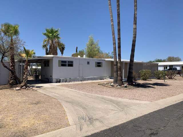 346 S Copper Drive, Apache Junction, AZ 85120 (MLS #6115339) :: Howe Realty