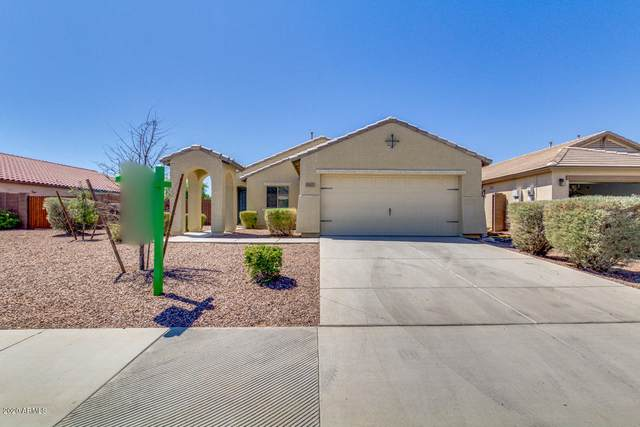 18601 W Larkspur Drive, Goodyear, AZ 85338 (MLS #6115386) :: The Bill and Cindy Flowers Team