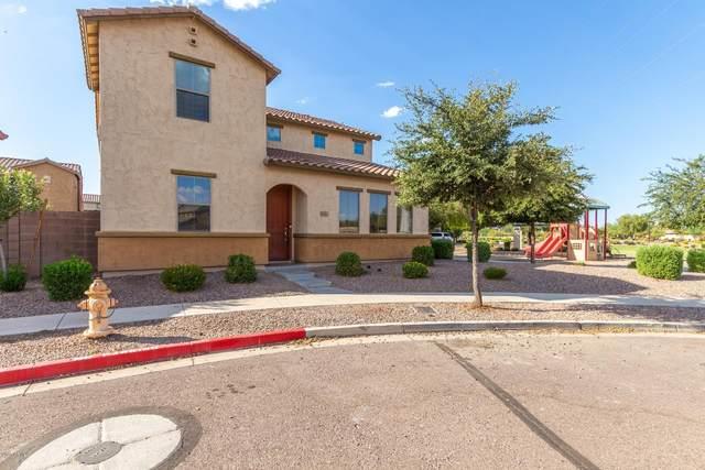 4742 W Carter Road, Laveen, AZ 85339 (MLS #6115425) :: Lucido Agency