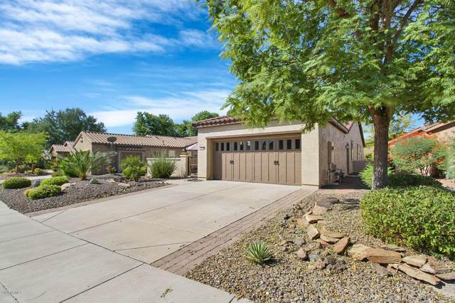 28590 N 123RD Lane, Peoria, AZ 85383 (MLS #6115427) :: CANAM Realty Group