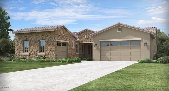 3265 N 196TH Avenue, Buckeye, AZ 85396 (MLS #6115432) :: Yost Realty Group at RE/MAX Casa Grande