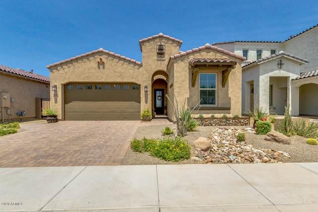 3258 E Tina Drive, Phoenix, AZ 85050 (MLS #6115454) :: Lifestyle Partners Team