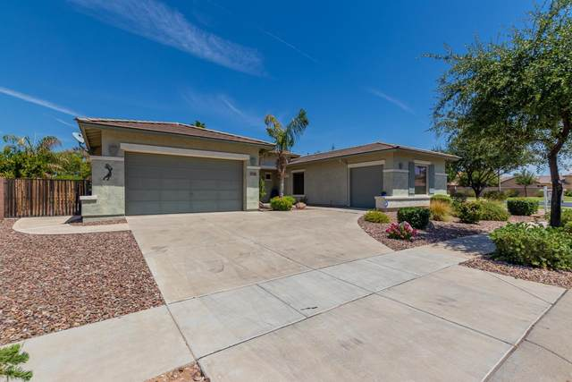796 E Runaway Bay Place, Chandler, AZ 85249 (MLS #6115483) :: Klaus Team Real Estate Solutions