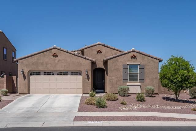 11580 N 162ND Lane, Surprise, AZ 85379 (MLS #6115489) :: Yost Realty Group at RE/MAX Casa Grande