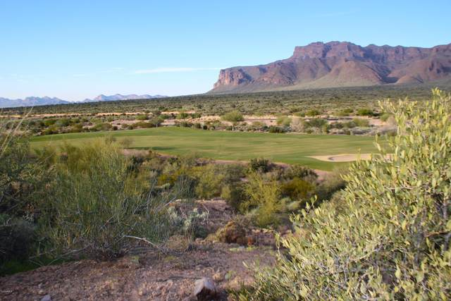 9368 E Skyline Trail, Gold Canyon, AZ 85118 (MLS #6115494) :: Russ Lyon Sotheby's International Realty