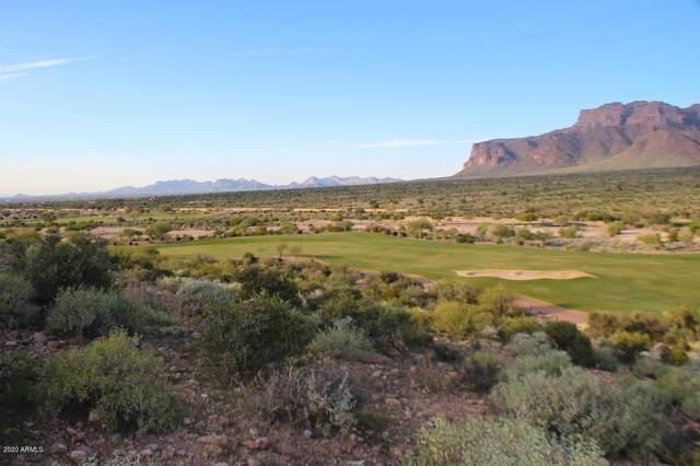9372 E Skyline Trail, Gold Canyon, AZ 85118 (MLS #6115498) :: Russ Lyon Sotheby's International Realty