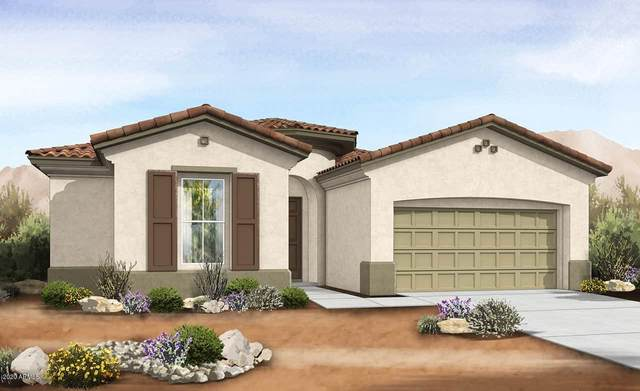 22655 E Lawndale Place, Queen Creek, AZ 85142 (MLS #6115525) :: The Bill and Cindy Flowers Team
