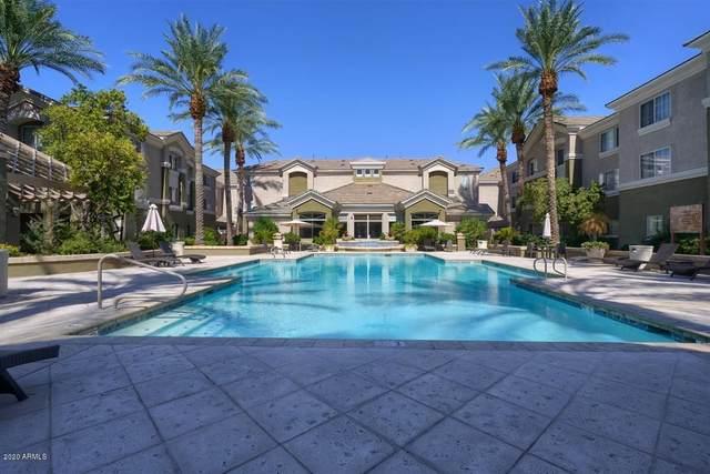 4455 E Paradise Village Parkway S #1016, Phoenix, AZ 85032 (MLS #6115584) :: Kepple Real Estate Group