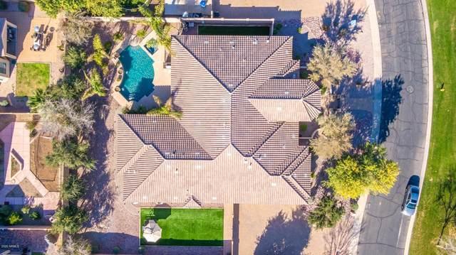 3720 S Nash Way, Chandler, AZ 85286 (MLS #6115640) :: My Home Group