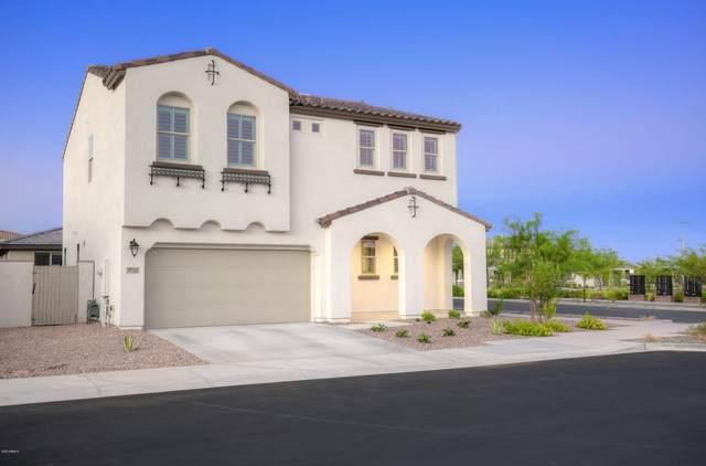 9757 E Solstice Avenue, Mesa, AZ 85212 (MLS #6115650) :: neXGen Real Estate