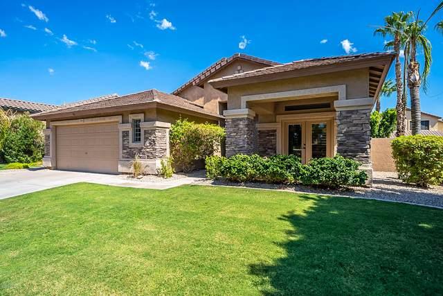 2156 W Periwinkle Way, Chandler, AZ 85248 (MLS #6115687) :: The Garcia Group