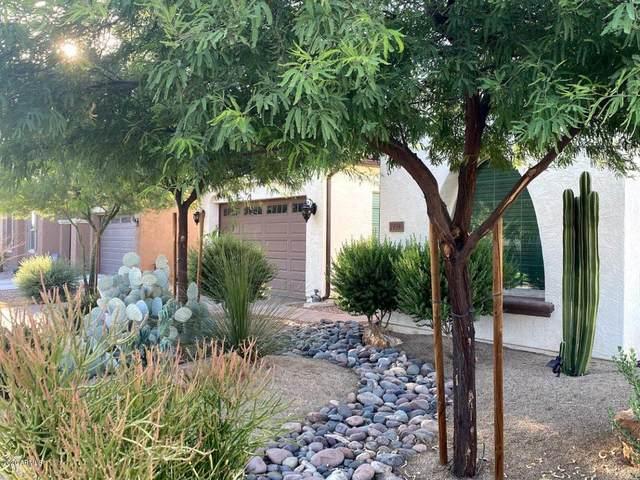 19390 E Strawberry Drive, Queen Creek, AZ 85142 (MLS #6115693) :: The Bill and Cindy Flowers Team