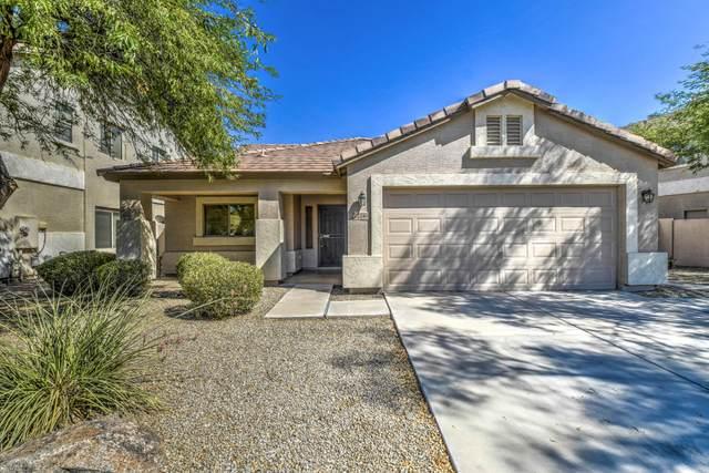 22241 E Calle De Flores, Queen Creek, AZ 85142 (MLS #6115708) :: Klaus Team Real Estate Solutions
