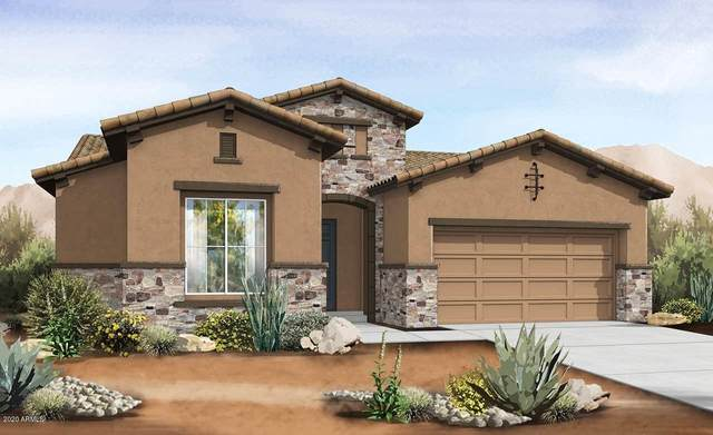 22631 E Lawndale Place, Queen Creek, AZ 85142 (MLS #6115729) :: Klaus Team Real Estate Solutions