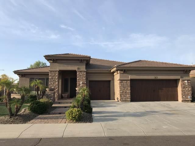 1917 W Blaylock Drive, Phoenix, AZ 85085 (MLS #6115748) :: Klaus Team Real Estate Solutions