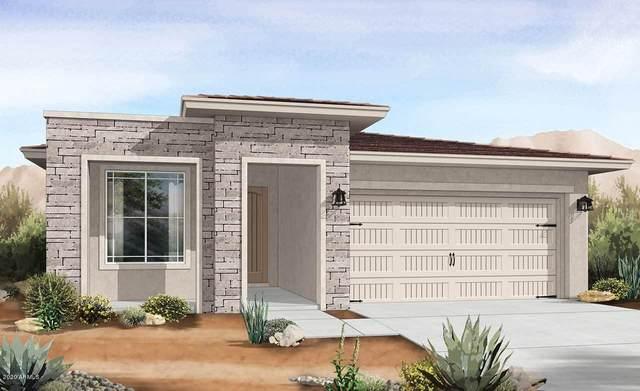 9169 S 168TH Avenue, Goodyear, AZ 85338 (MLS #6115752) :: Lucido Agency