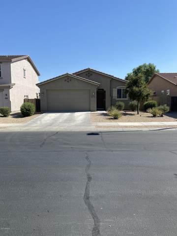 17695 W Desert Bloom Street, Goodyear, AZ 85338 (MLS #6115781) :: Lucido Agency