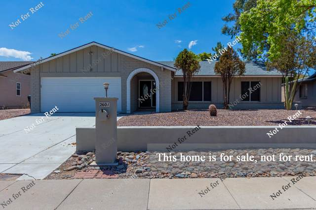 2601 E Marilyn Road, Phoenix, AZ 85032 (MLS #6115791) :: Midland Real Estate Alliance