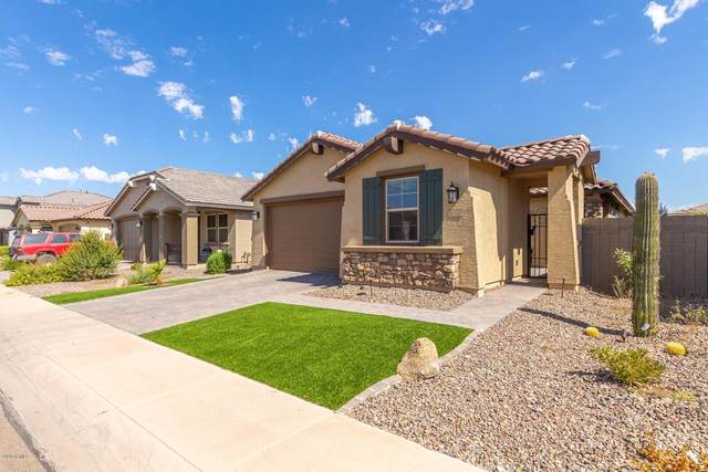 41300 W Palmyra Lane, Maricopa, AZ 85138 (MLS #6115814) :: Klaus Team Real Estate Solutions